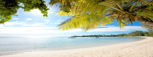 Holiday to Mauritius for pristine beaches and palm trees